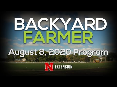 Backyard Farmer August 8, 2020