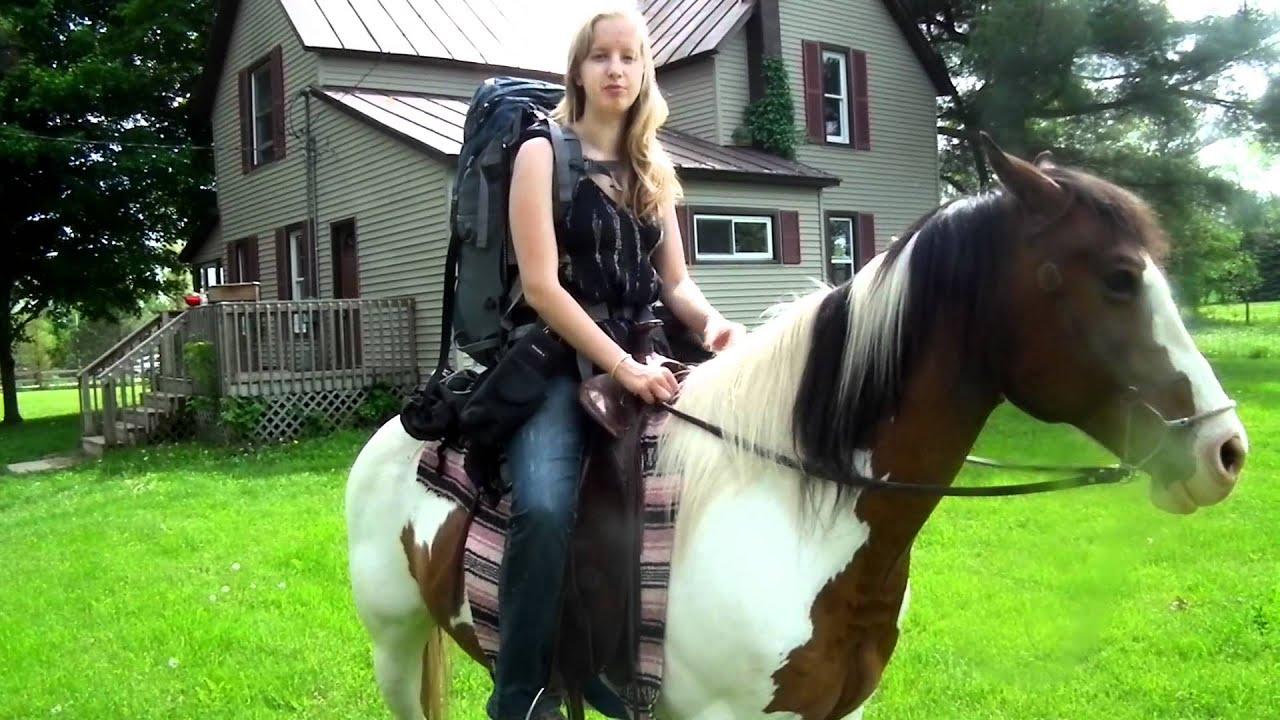 Regalo a tricolor paint horse YouTube