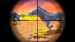 Download Video Safari Hunting: Free Shooting Game (by Oppana Games) Android Gameplay HD Trailer MP3 3GP MP4