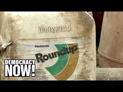 as-epa-insists-weed-killer-roundup-is-safe,-a-jury-orders-monsanto-to-pay-$2b-to-couple-with-cancer