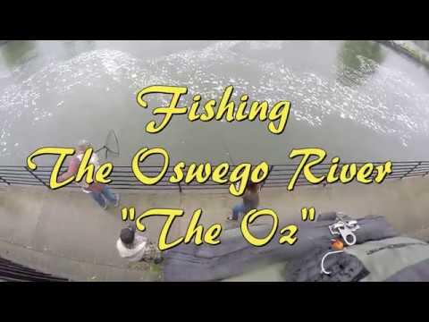 Oswego River Salmon Fishing NY