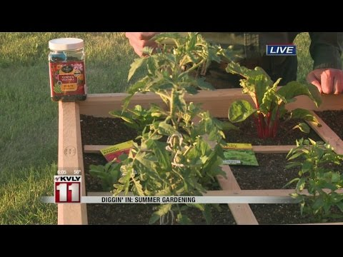 Diggin' In: Summer Gardening (3)
