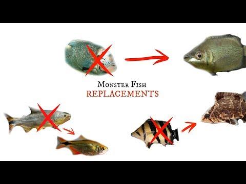 Monster Fish ALTERNATIVES