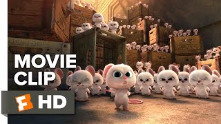 The Nut Job 2: Nutty by Nature Movie Clip - My Name is Mr. Feng (2017) | Movieclips Coming Soon