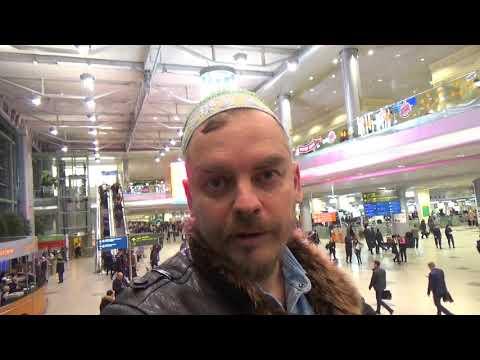Москва, Домодедово, аэропорт зал регистрации и встречающих, прогулка Алекса