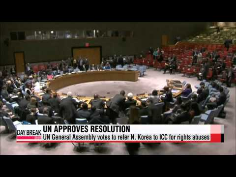 UN General Assembly votes to refer N. Korea to ICC for rights abuses   북한 인권 ICC