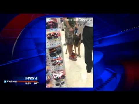 Service dog denied entry at Walgreen's