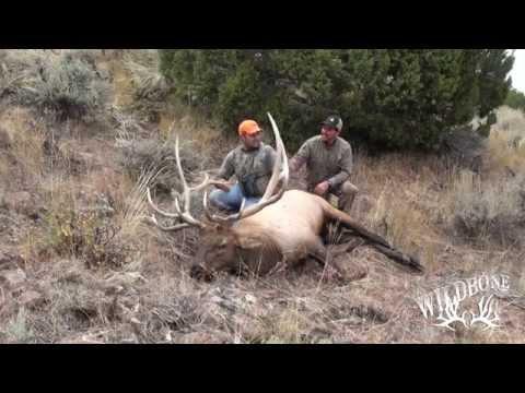 Hunting Colorado Elk On Public Land 2
