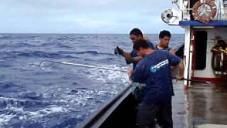 Hand Line Fishing at Midway Atoll
