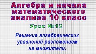 Алгебра 10 класс (Урок№12 - Решение алгебраических уравнений разложением на множители.)