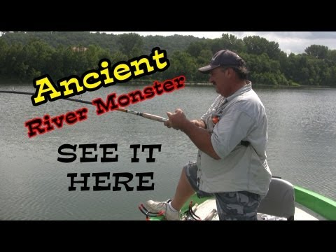 Prehistoric Fish Caught From The Depths Of The Ohio River