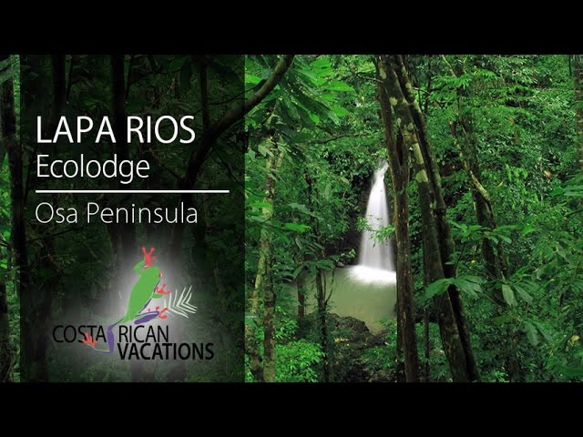 Lapa Rios Ecolodge By Frogtv Youtube