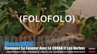 Comment Se Soigner Avec Le CORAN Et Les Herbes (FOLOFOLO)