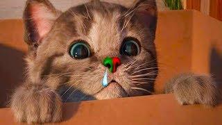 МАЛЕНЬКИЙ КОТЕНОК для детей ! Мультик игра про милого котика. Спасаем и лечим кота #пурумчата