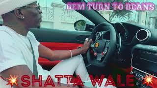 Shatta Wale - Dem Turn To Beans Slide
