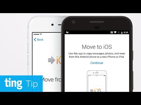 How to transfer your data and switch from Android to iPhone