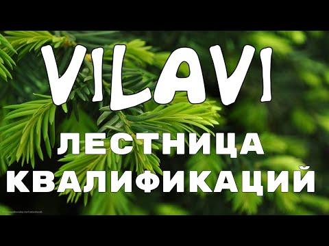 Маркетинг план Vilavi. Лестница квалификаций. Бизнес с вилави через интернет. Сетевой бизнес онлайн