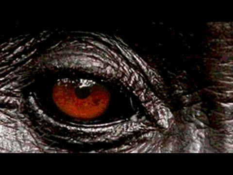 BigFoot:  Chilling Accounts Of A Mysterious, Man-like Creature