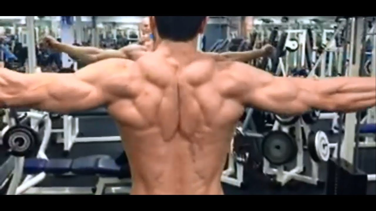 Musculation des épaules : l'oiseau à la poulie haute - YouTube