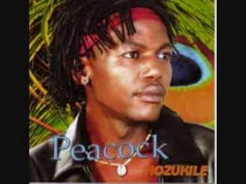 Peacock-Imithetho