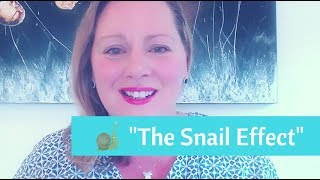 The Snail Effect - How To Stand Out From The Pack
