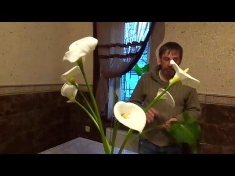 Квіти Зантадехії. Формуємо букет.