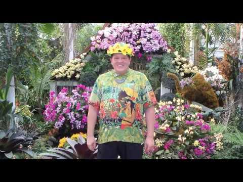 "Orchid Show ""Thailand "" 2017 in New York  Botanical Garden"