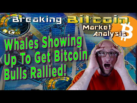 1 Billion In Bitcoin Just Did What?!  What This Means For The Bull Market!