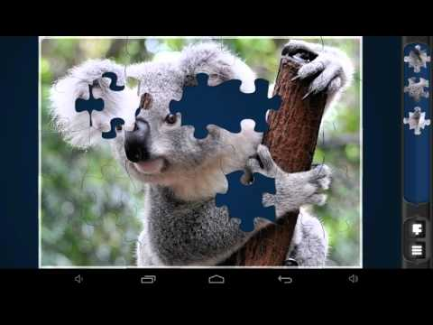 Magic Jigsaw Puzzles (Animals in the Wild)