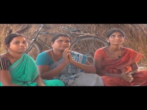 Use of Trichoderma viridi_CMSA & DG_ Karimnagar_Telangana
