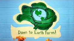 Down to Earth Farm - Sustainable Farm Jacksonville, FL