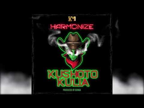 """Harmonize – """"Kushoto Kulia"""""""