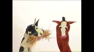 Baby Dolittle: Neighborhood Animals, Part 4 | Animal Videos for Kids | Baby Einstein