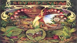 SPYRO GYRA Morning Dance 1979 ( USA ) 07 - It Doesn't Matter 08 - L...
