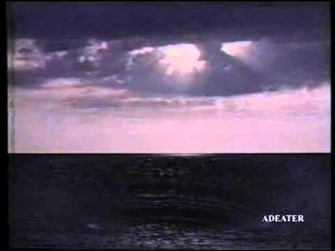 Greenpeace - USA - 1990