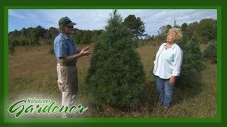 Farm Management: Best Practices | Volunteer Gardener