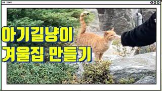 아기 길고양이 겨울집만들기 (faet. 다이소용품)