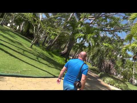 Catalonia Bavaro Beach, Golf & Casino Resort 5* обзор Доминикана