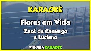 Baixar Flores Em Vida - Zezé di Camargo e Luciano / VERSÃO KARAOKÊ