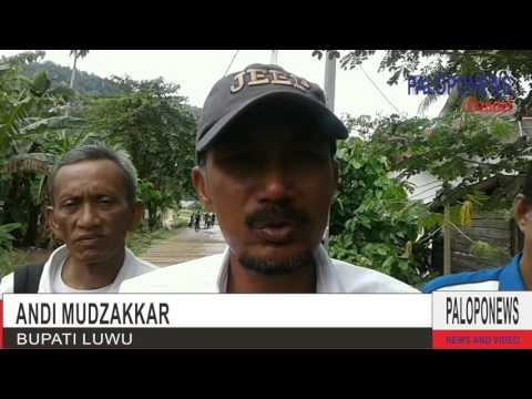 Video : Bupati Luwu Andi Muzakkar Tinjau Lokasi Banjir