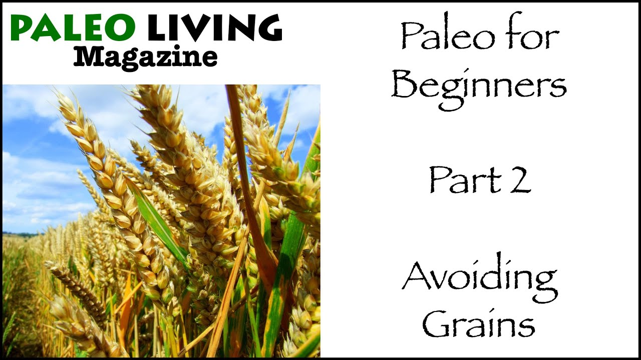 Beginners Paleo Diet Plan & Food List (With Recipes)