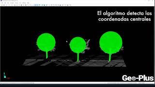 Detección automática de árboles en una nube de puntos (DENDROMETRIA)