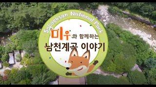 [소백산국립공원] 미우와 함께하는 남천야영장 이야기