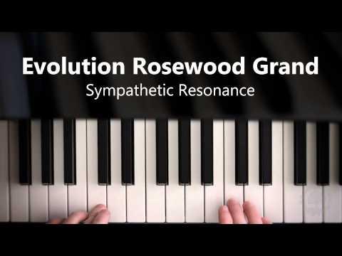 Evolution Rosewood Grand - Sympathetic Resonance