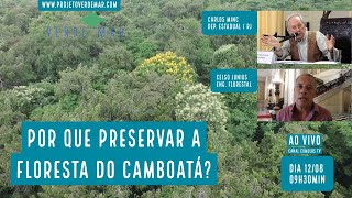 Qual o projeto para a Floresta do Camboatá sem o autódromo? - VERDE MAR AO VIVO #53