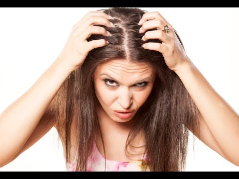 how to regrow thinning hair hair loss cure youtube