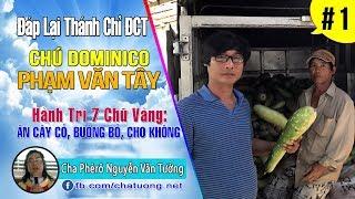 ▶ 01.Dom.PHẠM VĂN TÂY ✠ ĐÁP LẠI THÁNH CHỈ CỦA ĐỨC CHÚA TRỜI ✠ Cha Phêrô Nguyễn Văn Tường