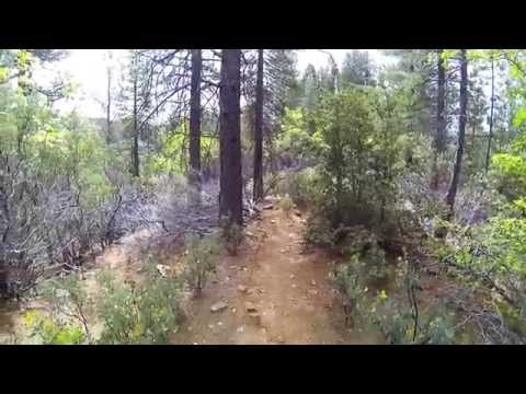 Foresthill OHV - Trail 6