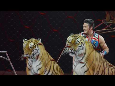 Alexander Lacey Performer Profile - Ringling Bros. Presents Out Of This World