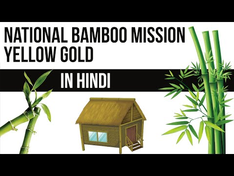 Why Bamboo is called GREEN Gold for Indian Farmers? National Bamboo Mission, Current Affairs 2018